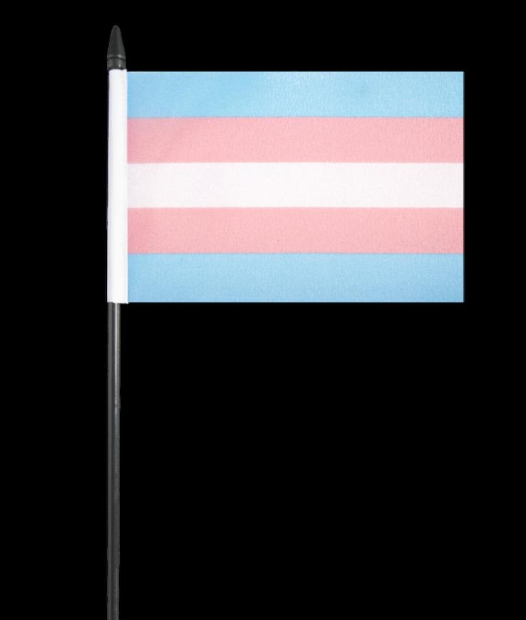 Pansexual Pride Small Hand Waving Flag