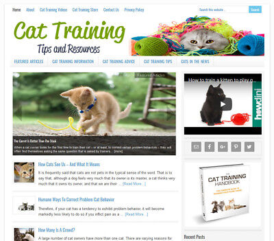 Cat Training Tips Turnkey Website Business For Sale W Automatic Content