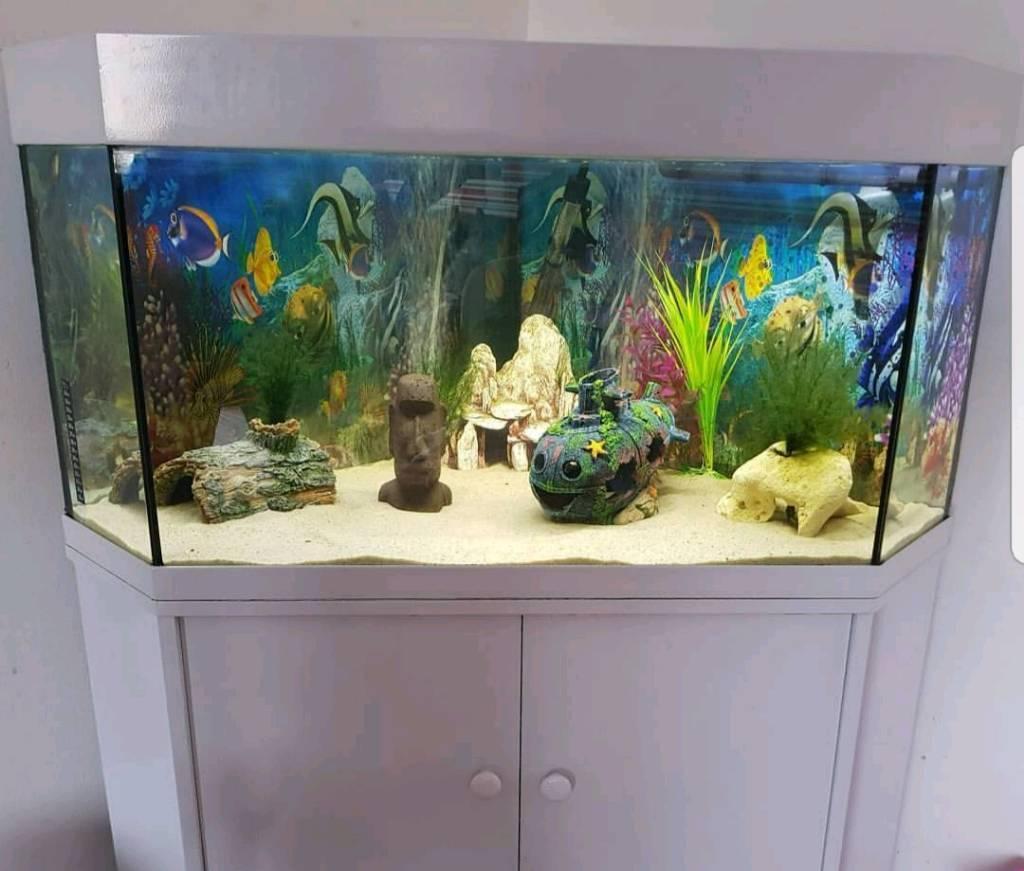 White Gloss Corner Fish Tank