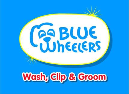 MOBILE DOG GROOMING BUSINESS FOR SALE Nambour Maroochydore Area Preview