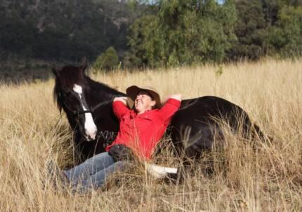 Horse Training Clinics Tasmania South