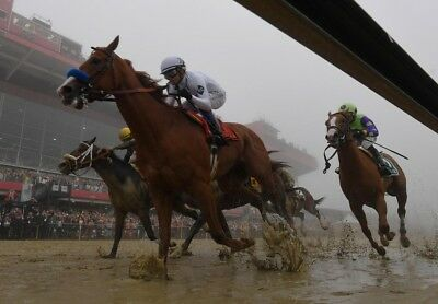 Justify 2018 Preakness Stakes Winner 8X10 Glossy Photo Picture Image  2