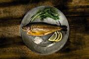 Boutique Fish Smokehouse For Sale Raleigh Bellingen Area Preview