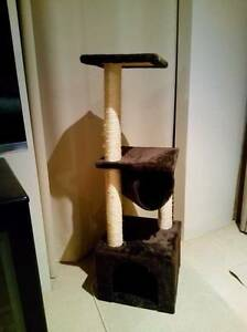 Cat scratch pole and play area Beldon Joondalup Area Preview