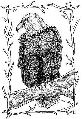 Unmounted Rubber Stamps, American Bald Eagle, Eagle Frame, Americana, Patriotic for sale  Shipping to India