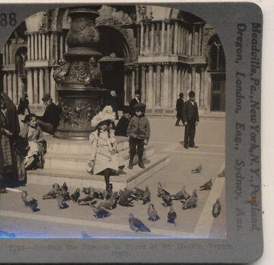 Children Feeding the Pigeons St Marks Venice Italy Keystone Stereoview c1920