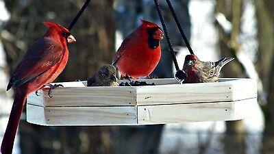 Feeder Hanging Tray Cardinal Bird Feeder Hand Made Unique Outdoor Garden Design