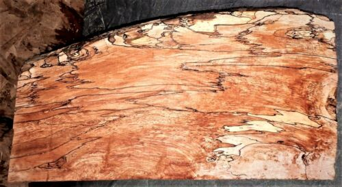 Curly Spalted Maple Wood #7010 Exhibition Grade 5A Guitar Billet 23 x 10  x 3-