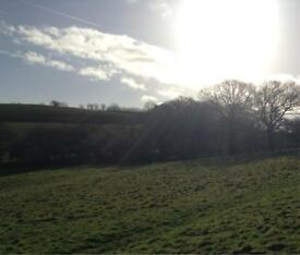 3.5 acre field to rent