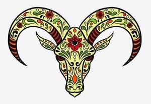 Animal sugar skull tattoo - photo#19