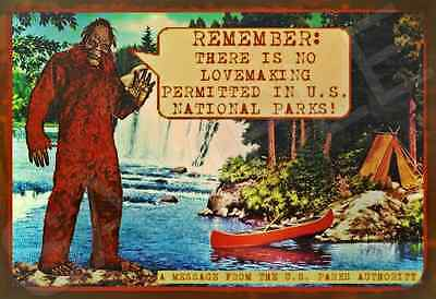 *BIG FOOT SASQUATCH SIGN* NO SEX! FOREST PARK LAKE SERVICE U.S. NATIONAL