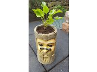 Trunk Design Planter BNIB