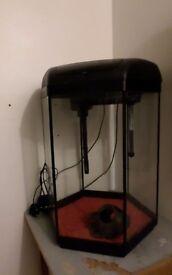 Fish tank Aquael Hexa Set 60 for sale bargain!!!
