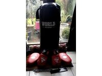 "PUNCH BAG 42 "" HIGH WITH BRACKETS AND CHAINS"