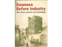 Swansea Before Industry. The Town And Its Surroundings by Gerald Gabb