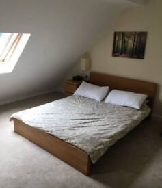 To let - double room for single occupant