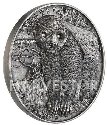2016 Honey Badger   Brave Animals Series   2 Oz  Silver   Mintage Only 400   1St