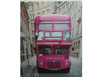 Pink bus picture