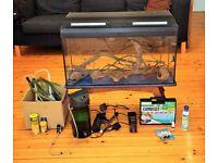 95l Askoll Marina Fish Tank, Amazon Black Water Environment. Full Set up.