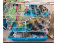 Hamster with 2 Cages, tubes, accessories and food.