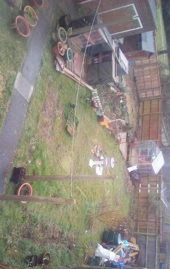 All gardening items