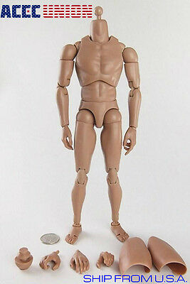 1 6 Male Figure Body Narrow Shoulder Ver 4 0 For Hot Toy Ttm18 Ttm19 Ttm21 U S A