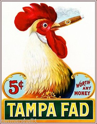 1905 Tampa Fad Rooster Chicken Vintage Cigar Box Label Advertisement Art Print ()