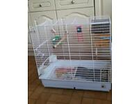 Large budgie's parrot cage