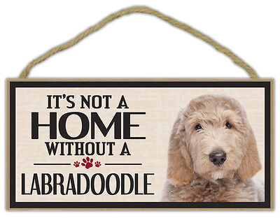 Wood Sign: It's Not A Home Without A LABRADOODLE (LABRADOR POODLE) | Dogs, Gifts for sale  Melbourne