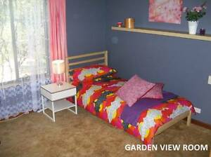 Cute, Tidy Modern Room for Employed/Studying Woman Klemzig Port Adelaide Area Preview