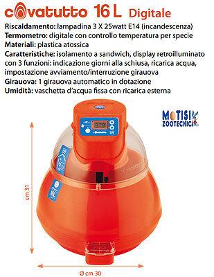 Incubatrice Covatutto 16 L digitale automatica,uova di tutte le specie usato  Case Belliemi