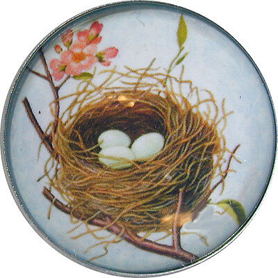 Crystal Dome Button Bird's Nest & Eggs blue NST1  FREE US SHIPPING