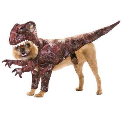 Raptor M Medium Pet Animal Planet Costume by - Pet Raptor Kostüme