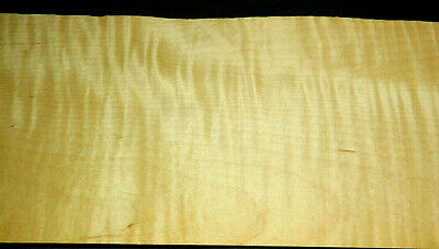 Curly Maple Raw Wood Veneer Sheets 5 X 53 Inches 142nd   4730-25