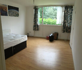 Huge Double room for a couple or Two friends 10min walk to Southfield Station *** no extra ***