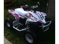 Quadzilla proshark rmx 50 kidsrace quad