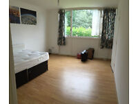 Huge Twin room for single or couple available on moday ** no extra **