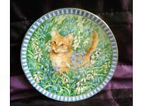 Bone China Plate Cat 'Spiro' Kitten