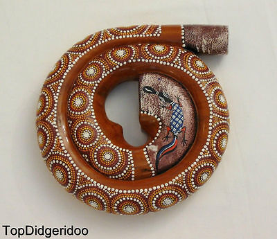 Spiral DIDGERIDOO + Bag Travel Compact snail shell Mahogany Wood Hand Carved Art