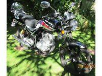 Lexmoto 125 Arrow motorcycle low mileage superb condition