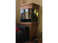 Aqua Oak Large Cube fish tank / aquarium