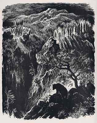 Zofia FIJALKOWSKA - Ein BÄR IN DEN BERGEN Polnische Grafik 1948  niedźwiedź