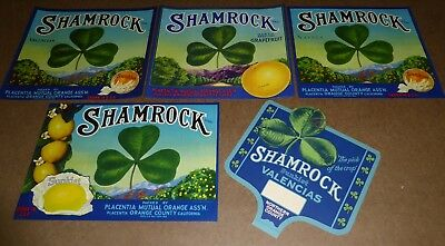 5 DIFF GENUINE SHAMROCK CRATE LABELS & SIGN PLACENTIA CALIFORNIA 1930S VINTAGE