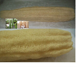 22-INCHES-100-NATURAL-EGYPTIAN-ORGANIC-LOOFAH-LOFA-LOOFA-SPONGE-TO-SHOWER