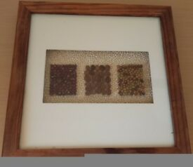 Wooden art frame: Framed seeds