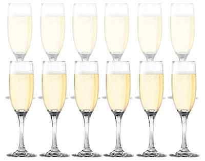 Dailyware Toasting Flutes 12 Piece Set Champagne Glasses Mimosas Party New