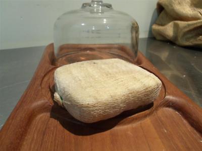 HORSERADISH SMOKED CHEESE 2 BLOCKS 1LB TOTAL (Horseradish Cheese)