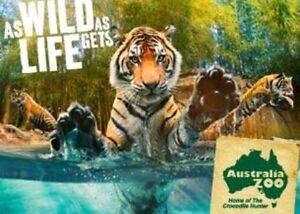 Australia zoo pass 2Adults 4children Kurwongbah Pine Rivers Area Preview