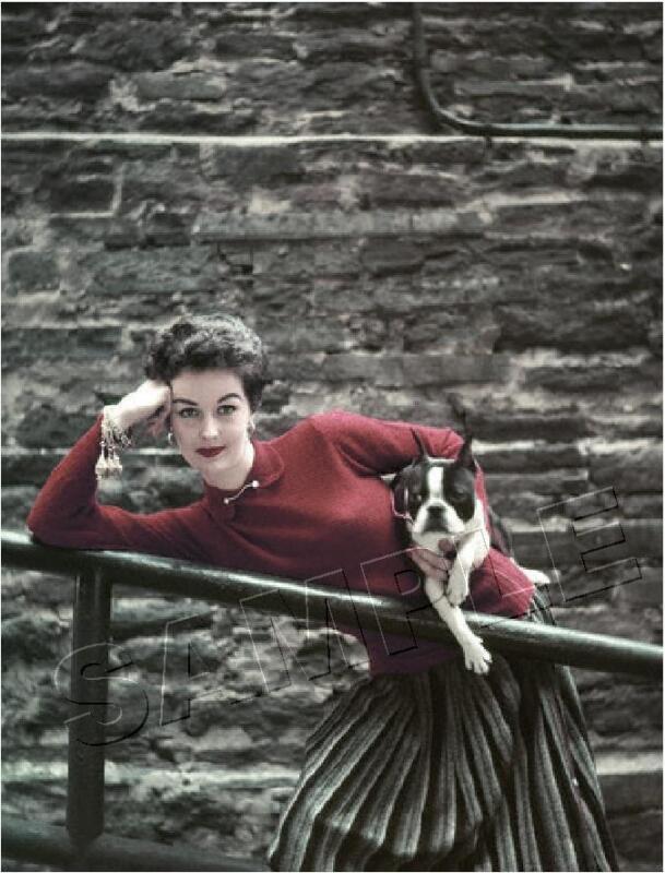 BOSTON TERRIER & WOMAN VINTAGE FASHION REPRO 1952 DOG PHOTO *CANVAS* ART PRINT