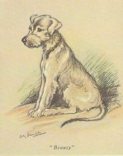 Irish Wolfhound Puppy - MATTED Dog Print - Lucy Dawson